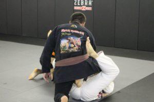 Gael Force Brazilian Jiu Jitsu ( BJJ ) in Roxbury Twp, (morris county) NJ